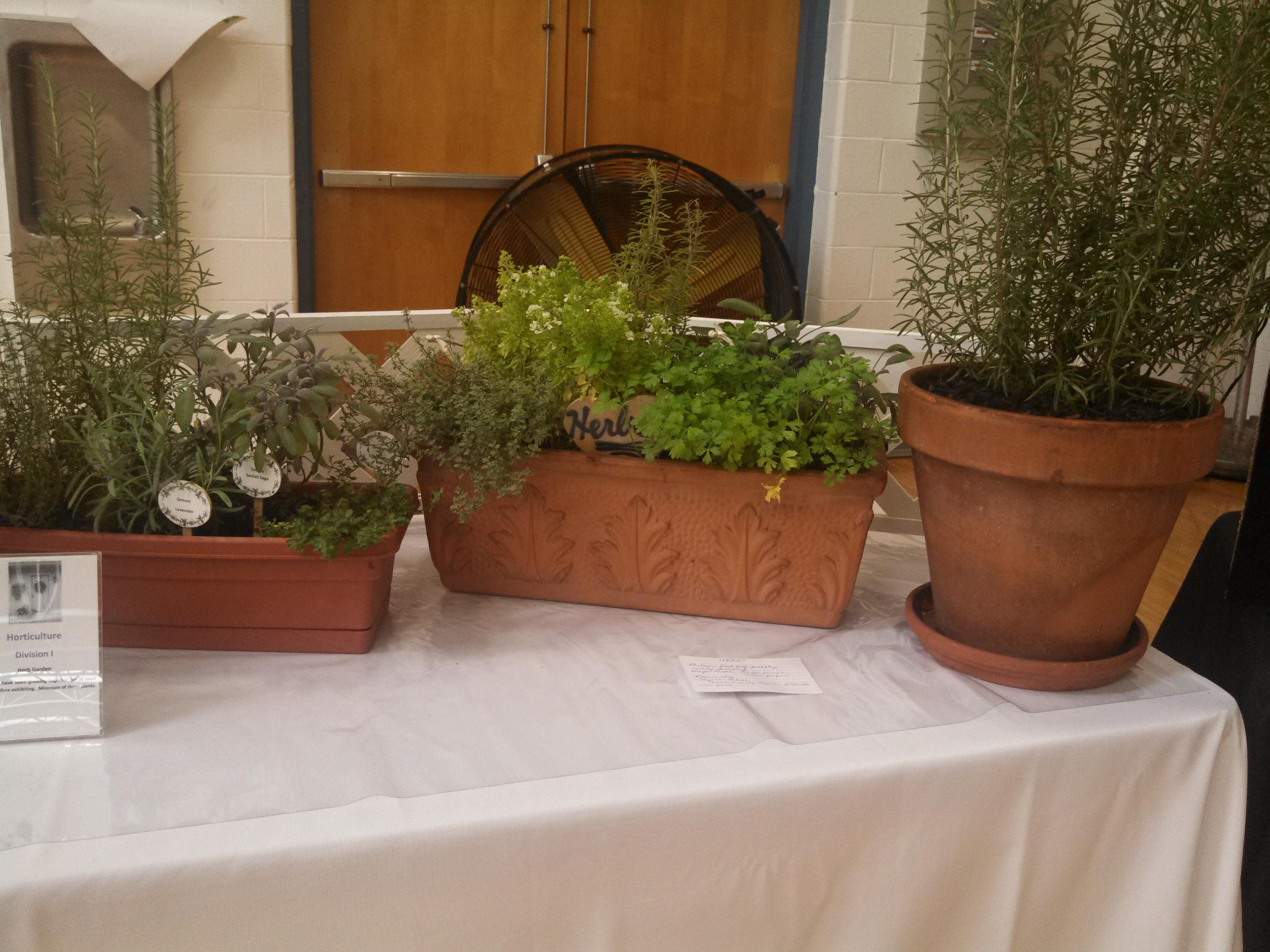 "2013 Flower Show ""Flowers For Every Room""   Pine Plains Garden Club"