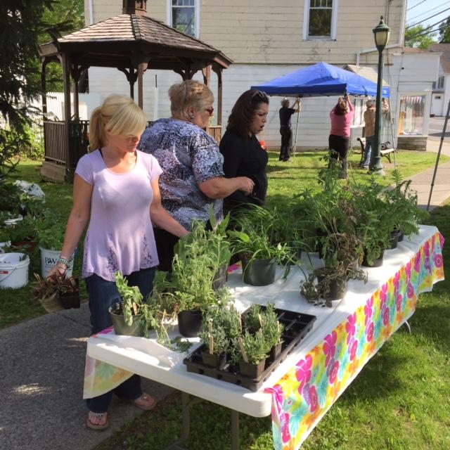 2016 plant sale 5